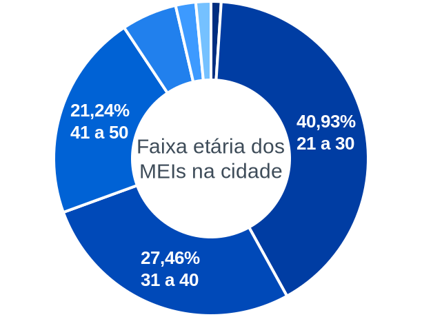 Faixa etária de MEIs na cidade de Murici dos Portelas