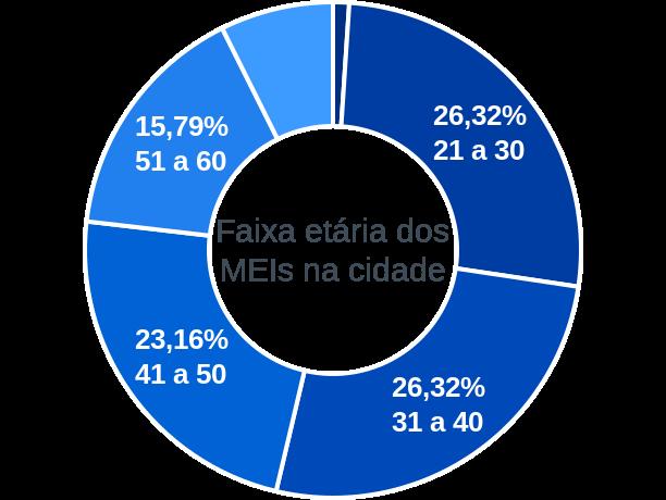 Faixa etária de MEIs na cidade de Novo Oriente do Piauí