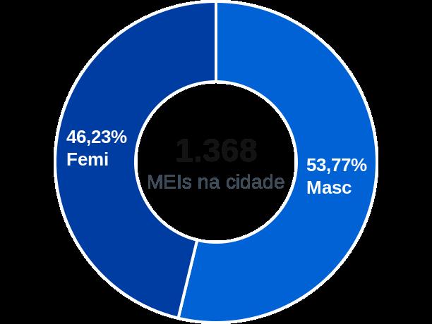 Gênero de MEIs na cidade de Oeiras