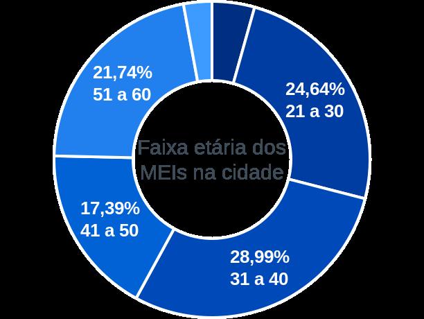 Faixa etária de MEIs na cidade de Palmeira do Piauí