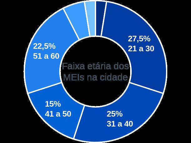 Faixa etária de MEIs na cidade de Patos do Piauí