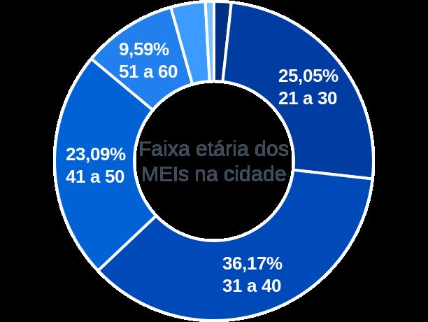 Faixa etária de MEIs na cidade de Paulistana