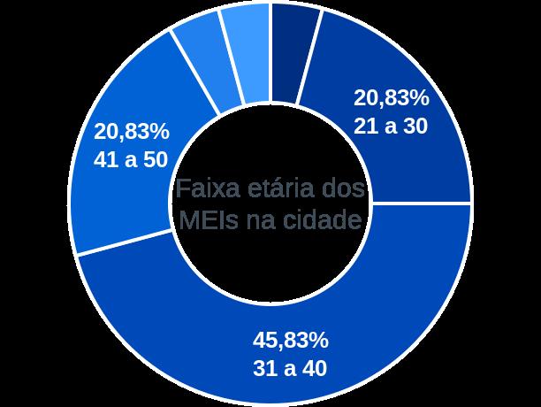 Faixa etária de MEIs na cidade de Ribeira do Piauí