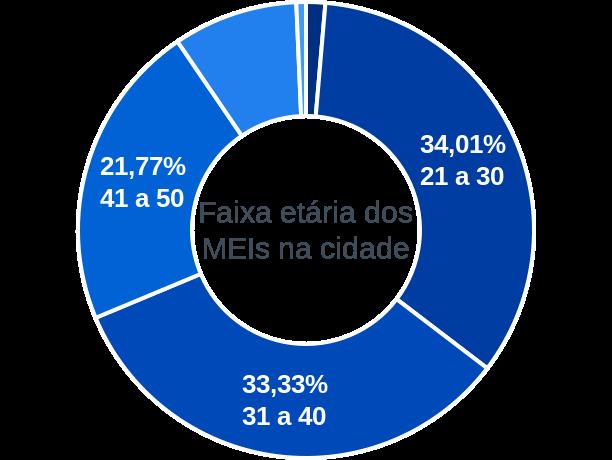 Faixa etária de MEIs na cidade de Ribeiro Gonçalves