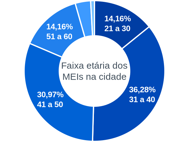 Faixa etária de MEIs na cidade de Santa Cruz do Piauí