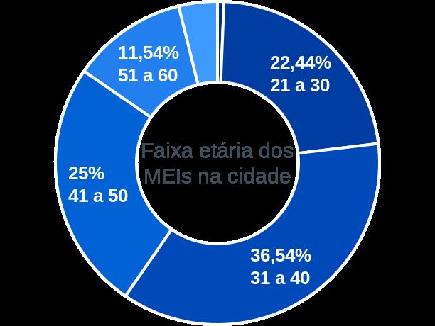 Faixa etária de MEIs na cidade de Santa Rosa do Piauí
