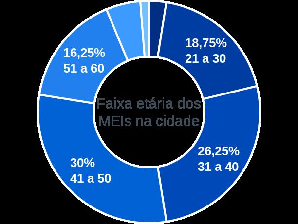 Faixa etária de MEIs na cidade de Santo Inácio do Piauí