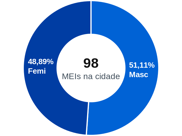 Gênero de MEIs na cidade de São João da Fronteira