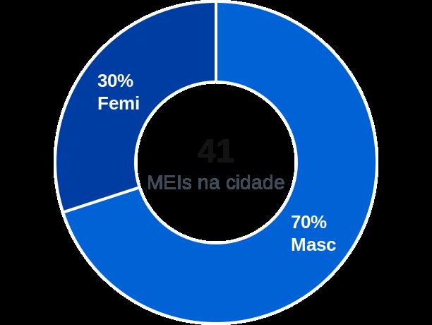 Gênero de MEIs na cidade de São Lourenço do Piauí