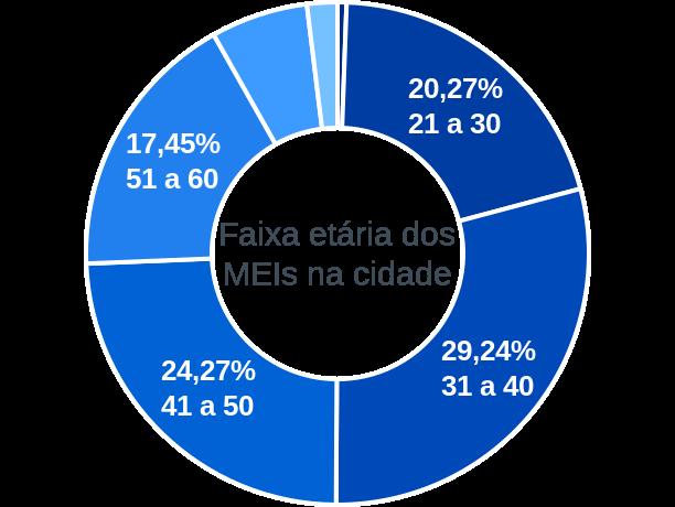 Faixa etária de MEIs na cidade de São Raimundo Nonato