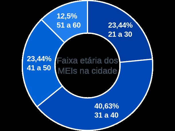 Faixa etária de MEIs na cidade de Sebastião Leal