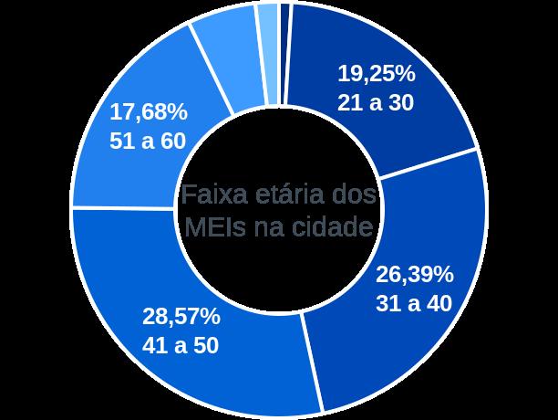 Faixa etária de MEIs na cidade de Alto Paraná