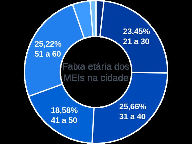 Faixa etária de MEIs na cidade de Brasilândia do Sul