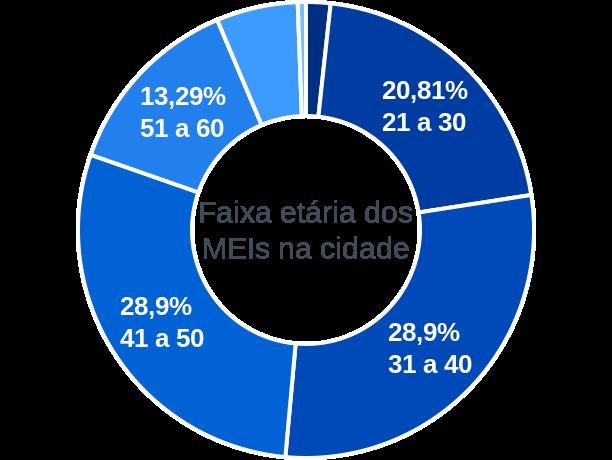 Faixa etária de MEIs na cidade de Fernandes Pinheiro
