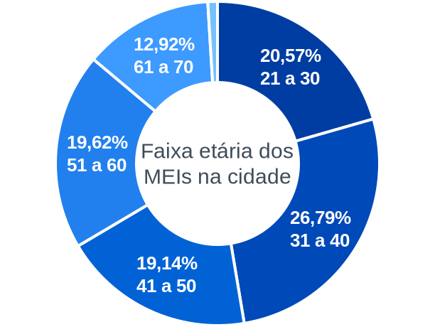 Faixa etária de MEIs na cidade de Honório Serpa
