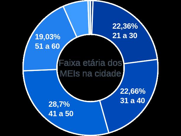 Faixa etária de MEIs na cidade de Inácio Martins