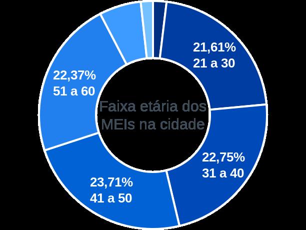 Faixa etária de MEIs na cidade de Moreira Sales