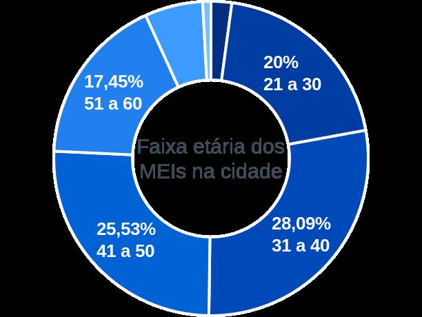 Faixa etária de MEIs na cidade de Paula Freitas