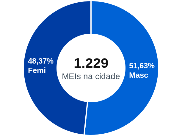 Gênero de MEIs na cidade de Piraí do Sul