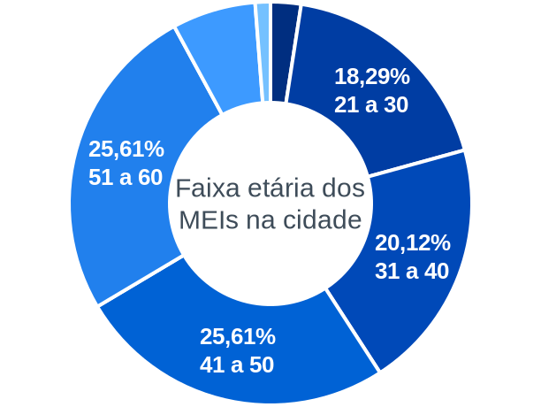 Faixa etária de MEIs na cidade de Planaltina do Paraná