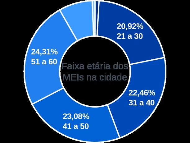 Faixa etária de MEIs na cidade de Porto Amazonas