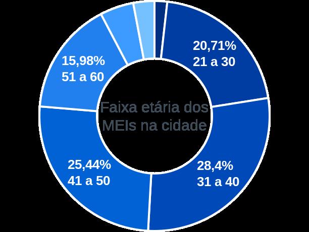Faixa etária de MEIs na cidade de Porto Vitória