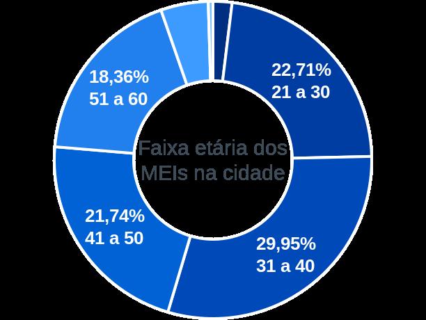 Faixa etária de MEIs na cidade de Prado Ferreira