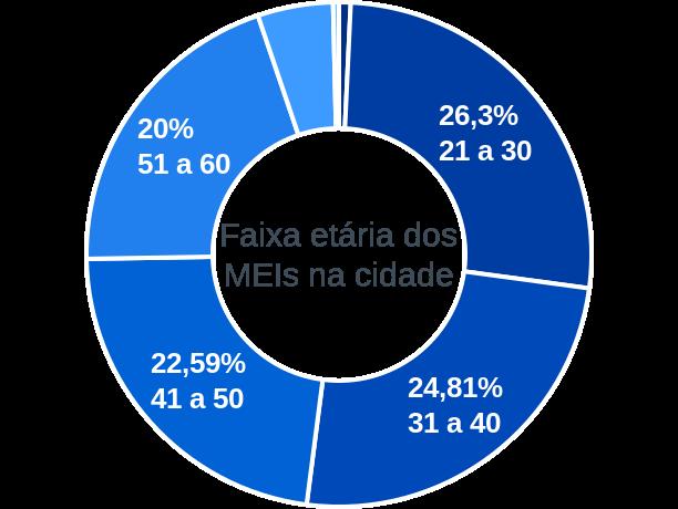 Faixa etária de MEIs na cidade de Presidente Castelo Branco