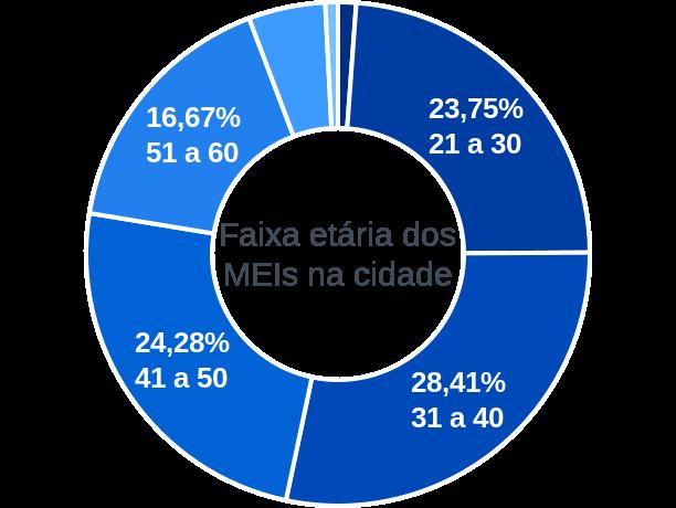 Faixa etária de MEIs na cidade de Ribeirão Claro