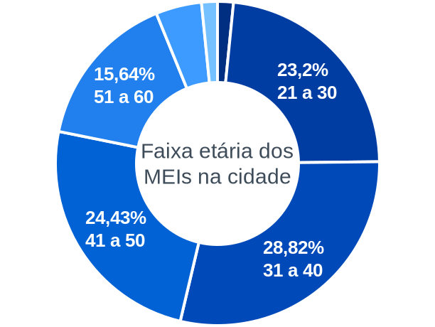 Faixa etária de MEIs na cidade de Ribeirão do Pinhal