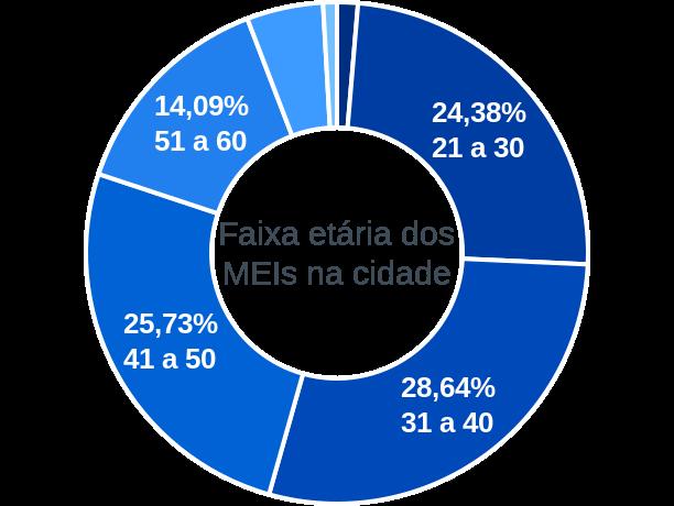 Faixa etária de MEIs na cidade de Rio Azul