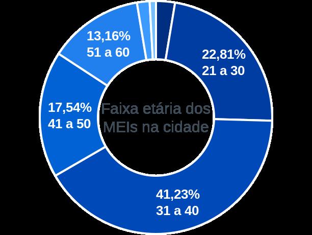 Faixa etária de MEIs na cidade de Rio Branco do Ivaí