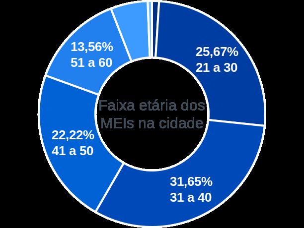 Faixa etária de MEIs na cidade de Rio Branco do Sul