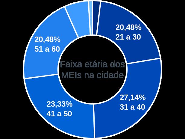 Faixa etária de MEIs na cidade de Salto do Itararé