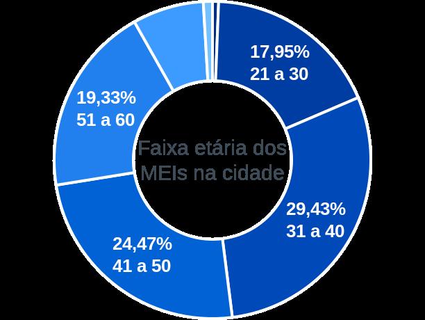 Faixa etária de MEIs na cidade de Santo Antônio da Platina