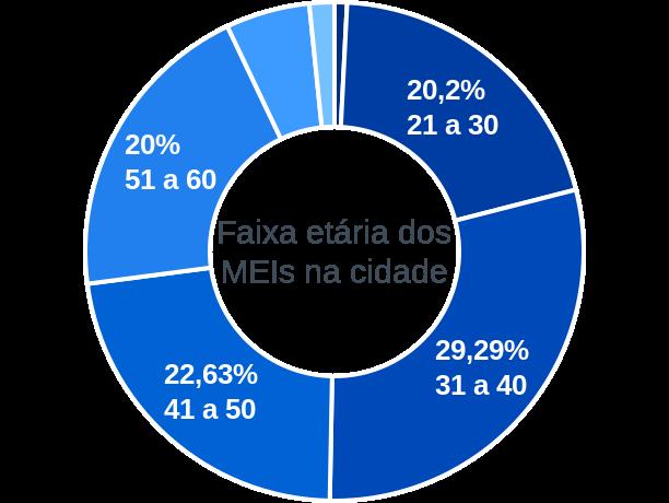 Faixa etária de MEIs na cidade de São Sebastião da Amoreira