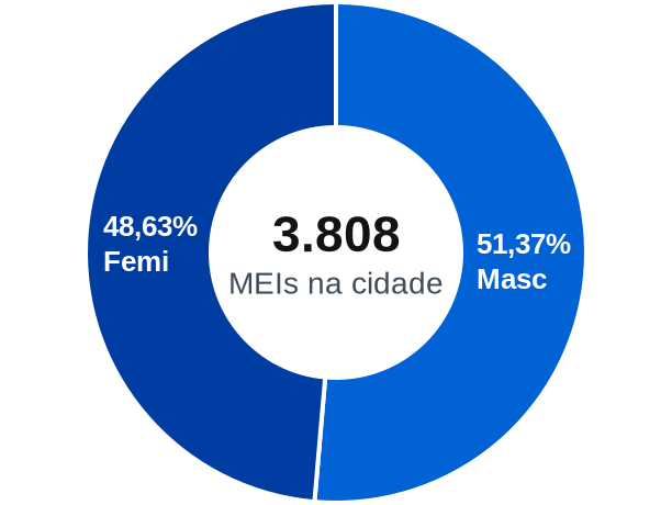 Gênero de MEIs na cidade de Cachoeiras de Macacu