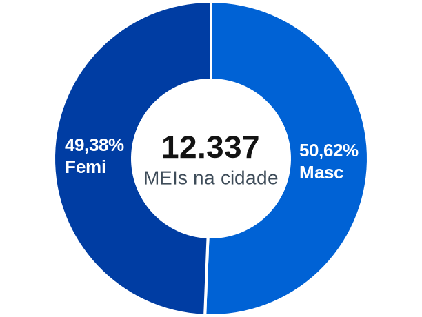 Gênero de MEIs na cidade de Nilópolis