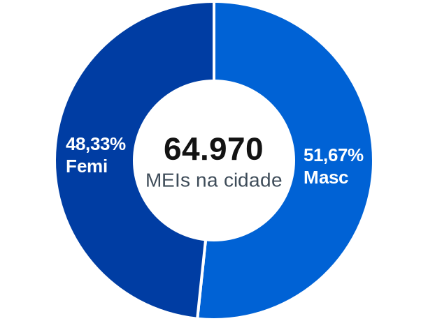 Gênero de MEIs na cidade de Nova Iguaçu