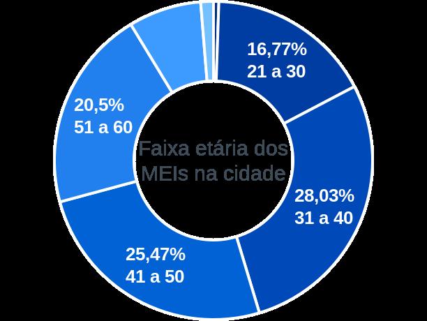 Faixa etária de MEIs na cidade de Paraíba do Sul