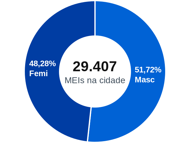Gênero de MEIs na cidade de Petrópolis