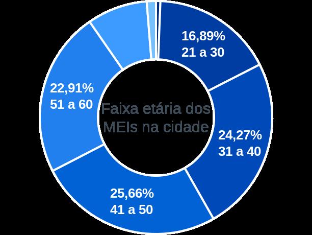 Faixa etária de MEIs na cidade de Santo Antônio de Pádua