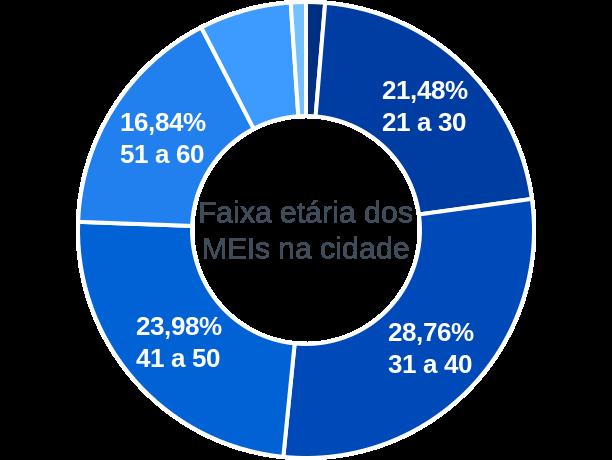 Faixa etária de MEIs na cidade de São Francisco de Itabapoana