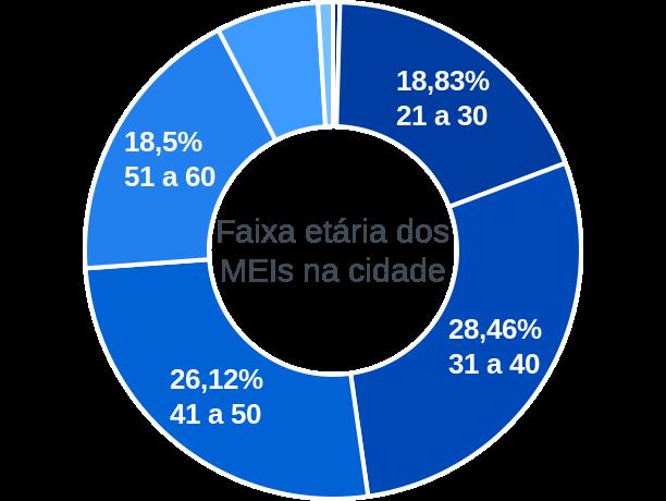 Faixa etária de MEIs na cidade de São Gonçalo
