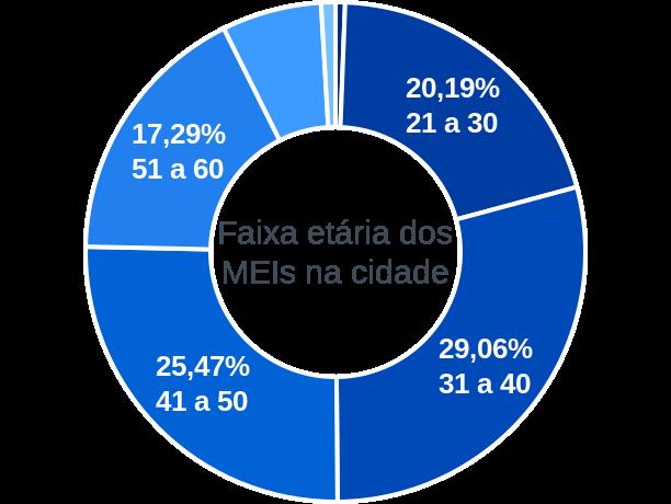 Faixa etária de MEIs na cidade de São João de Meriti