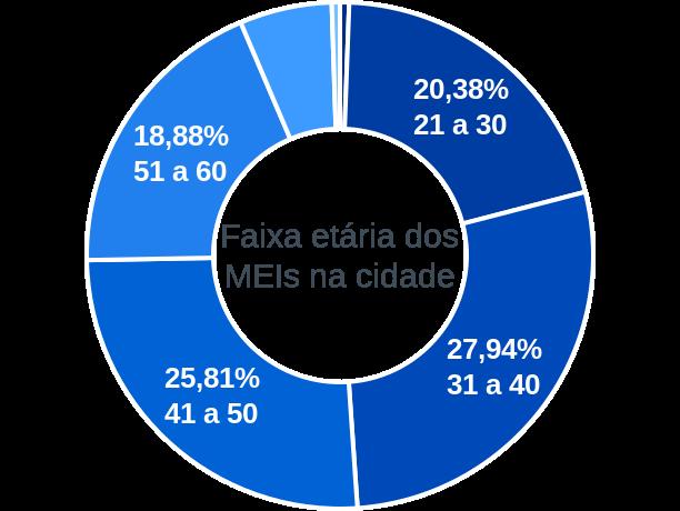 Faixa etária de MEIs na cidade de São José do Vale do Rio Preto