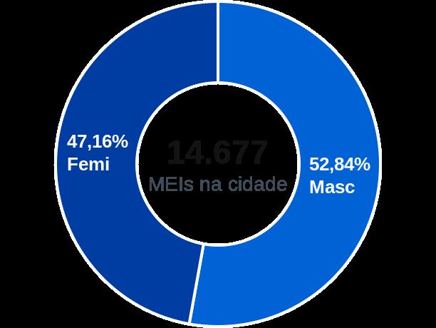 Gênero de MEIs na cidade de Teresópolis