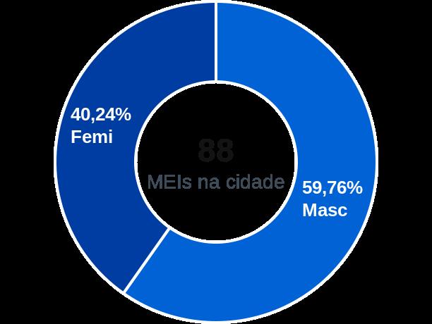 Gênero de MEIs na cidade de Major Sales