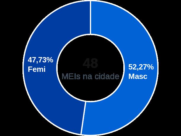 Gênero de MEIs na cidade de Rafael Godeiro