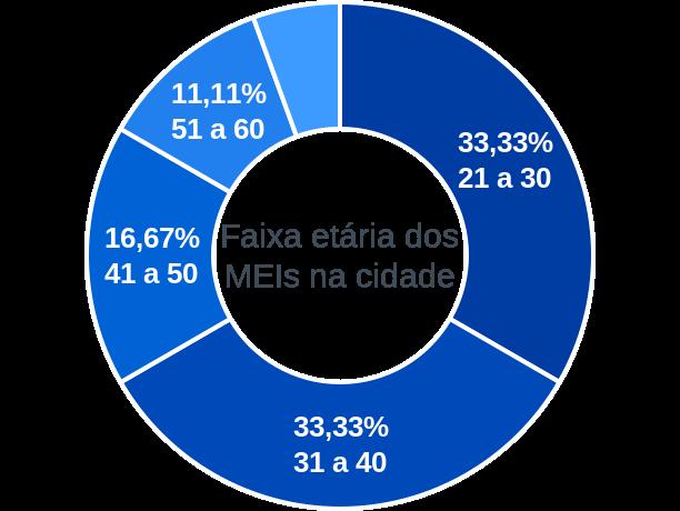 Faixa etária de MEIs na cidade de Ruy Barbosa